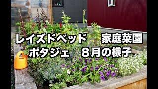 【家庭菜園】レイズドベッド ポタジェ 8月の様子 /raised bed,potager ...