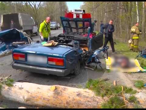 Деревья раздавили машину в Кузнецком районе, трое погибших (18+)