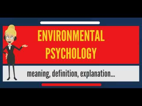What is ENVIRONMENTAL PSYCHOLOGY? What does ENVIRONMENTAL PSYCHOLOGY mean?