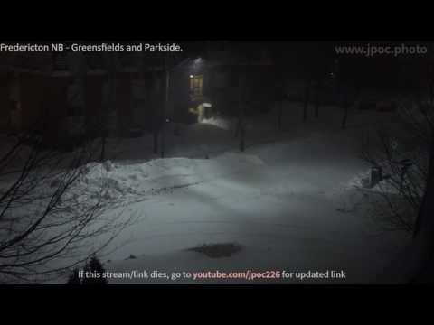 Snow Storm - LIVE WEBCAM - Fredericton NB