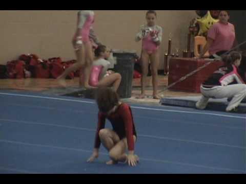 level 6 gymnastics state meet ohio