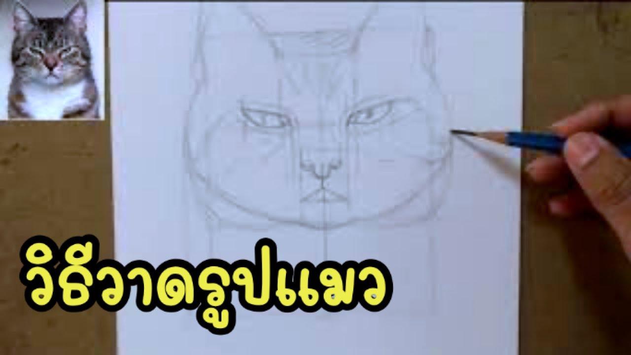 How to draw a cat in pencil วาดภาพเหมือนเจ้าเหมียวหน้าบึ้ง วาดรูปแมวงอล ด้วยเทคนิคดินสอ