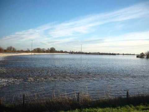 River Ouse overflowing into Cawood Ings