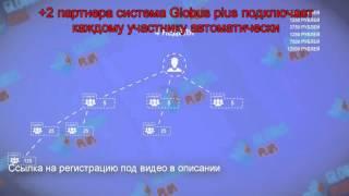 Сколько можно заработать на globus inter com