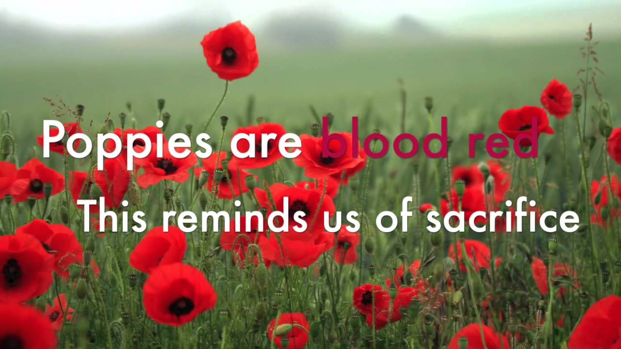 Why we wear poppies by Gabriel and Harry