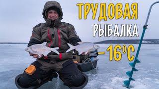 Зимняя рыбалка на мотыля Ловля подлещика на мормышку на Печенежском водохранилище