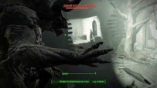 Fallout 4. Самый криповый побочный квест