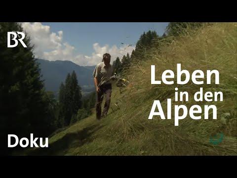 Die Alpen: Leben im Extremen - Faszination Wissen - ganze Sendung vom 27.4.2015