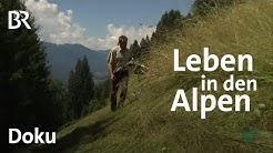 Die Alpen: Leben im Extremen | Faszination Wissen | Doku | BR