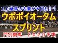 ウポポイオータムスプリント【門別競馬2020予想】10歳馬の古豪が今回も!?