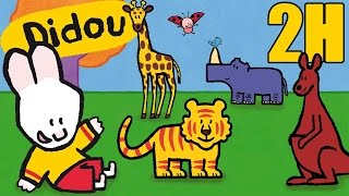 Compilation de Didou pour apprendre à dessiner et à colorier les an...