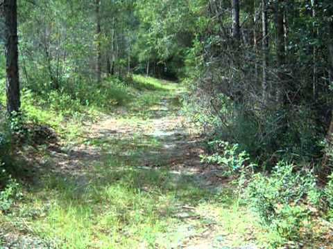 Width of Property in East Milton, Florida near Adventures Unlimited