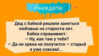 Анекдоты Подборка веселых анекдотов Юмор Смех Настроение