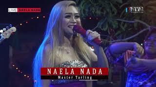 IWAK PEDA - Desi Paraswaty - NAELA NADA Live Bulakparen