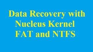 How to Data Recovery with Nucleus Kernel FAT and NTFS - Betdownload.com