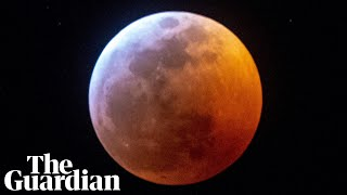 What the super blood wolf moon looked like around the world