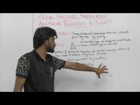 Sociology_XI_Social Structure, Stratification & Social Processes in Society_Part1_Intro_Sameer Sagar