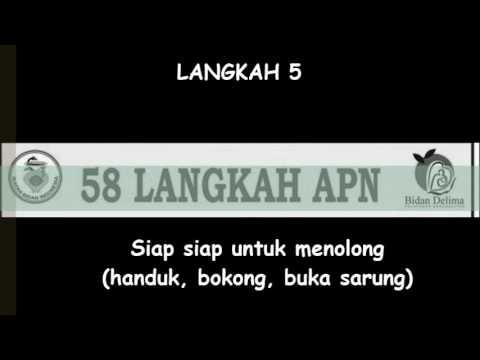 Lagu APN 58