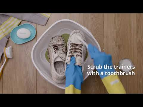 How to clean sneakers by hand | Cleanipedia