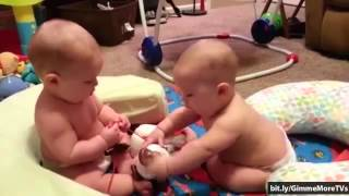 Funny Babies Moments - Top 8 Cutest Baby Fighting [Compilation]