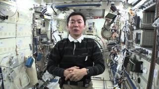 「きぼう」船内の掃除をする油井宇宙飛行士 (撮影日:2015年10月17日)