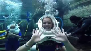 Aqua Trek at Atlantis the Palm.