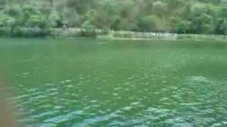 Swimming in Renuka Lake