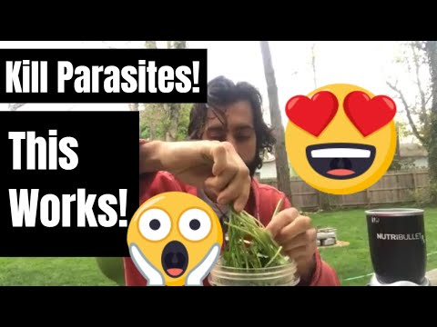 How to KILL PARASITES FAST! (Natural and EASY Recipe!)