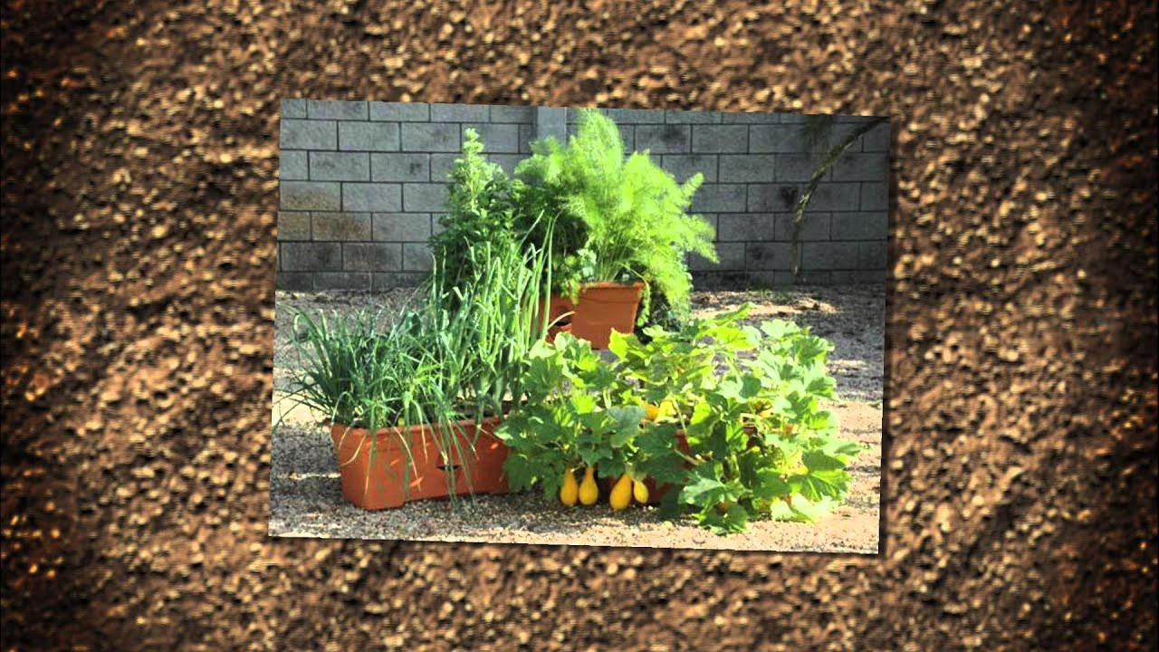 A Garden Patch   Grow Boxes   Container Gardening
