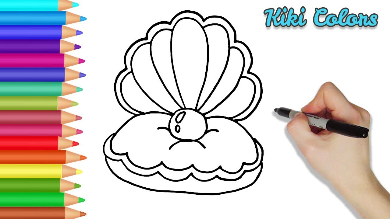 How To Draw Clam With Pearl Part 1