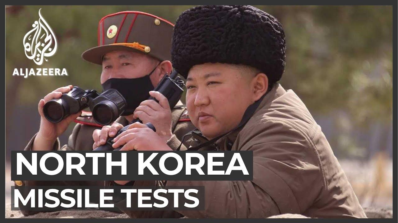north korea corona meme