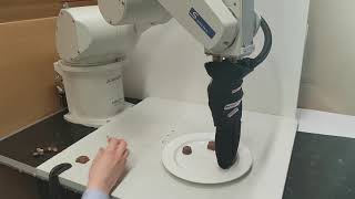 Robot serving sweets on a plate