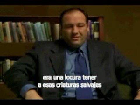 Tony Soprano Y Los Patos