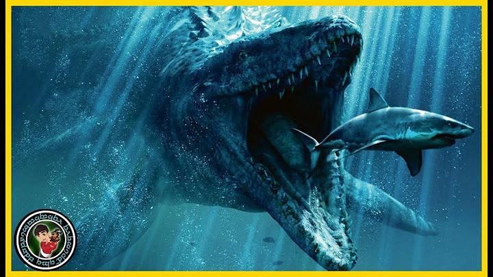 los 9 monstruos marinos ms grandes del mundo