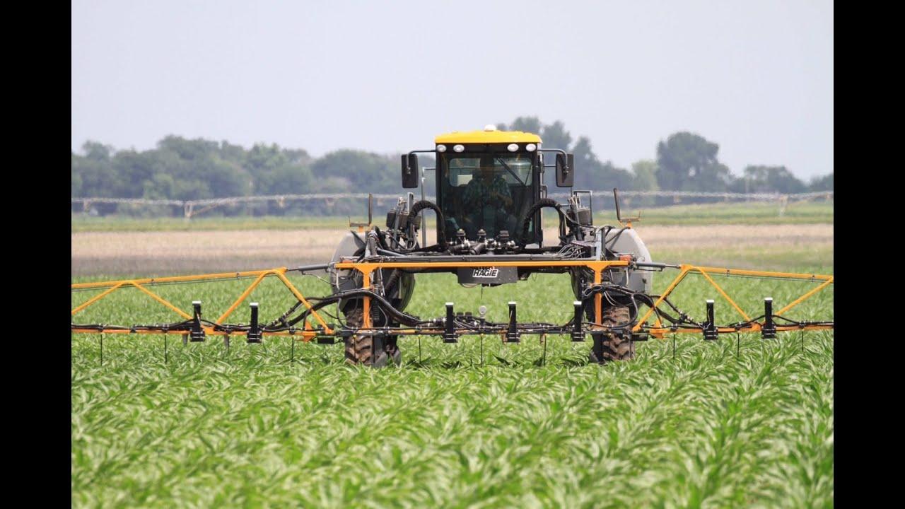 A new way to curb nitrogen pollution: Regulate fertilizer