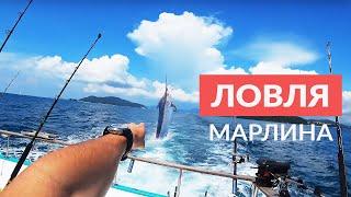 Ловля Марлина. Интересные Подводные Съемки. Рыбалка в Таиланде