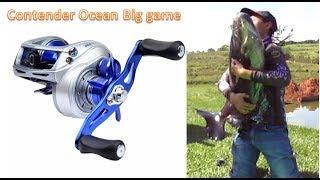 TESTANDO A CONTENDER GTO OCEAN BIG GAME