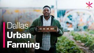 How Urban Farming Saved a Dallas Community