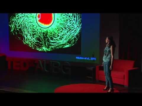 How genetics and environment work together to shape our destiny: Milena Georgieva at TEDxAUBG