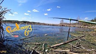 Рыбалка на карася в удовольствие с поплавком весной