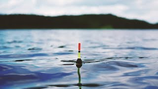 Рыбалка на карася весной на ЧЕСНОК | Поклёвки карася на поплавок  | Поплавочная маховая удочка