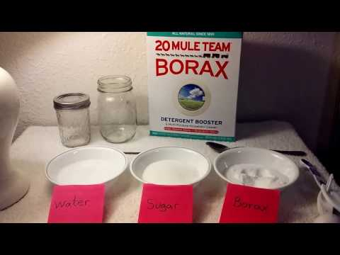Borax and DIY Ant Trap (with educational, health, and safety facts using all naturalBorax).