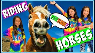 Horses for Kids | Learn How to Ride a Horse |  All About Horses!