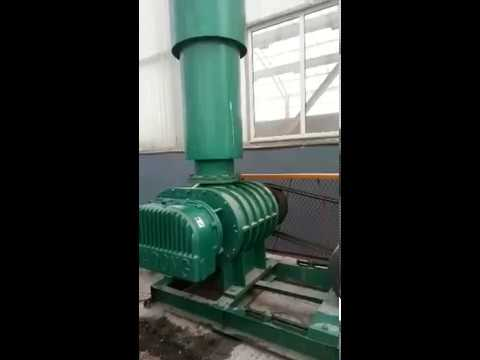 HDSR series three lobe roots air blower in Shuanghui Group