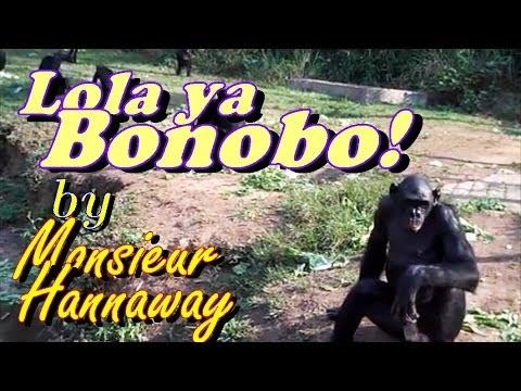 Lola ya Bonobo (Kinshasa, Democratic Republic of Congo)