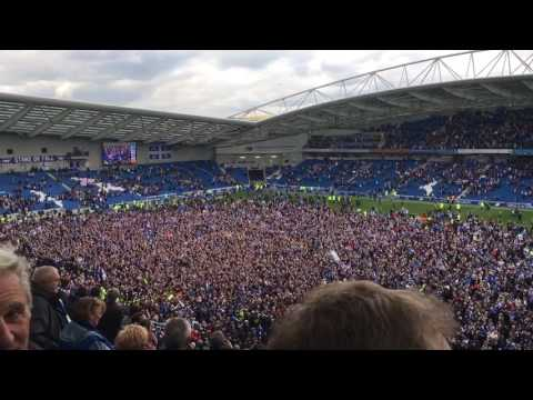 Brighton Fans Celebrate Promotion On The Amex Pitch