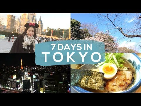 Tokyo Vlog I 7 Days in Japan I what to do & what to eat (deutsch) I 일본 브이로그