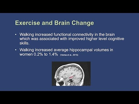 The Impact of Exercise on Cognitive Functioning