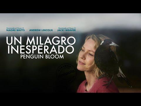 Un Milagro Inesperado (Penguin Bloom) - Trailer Oficial Doblado al Español