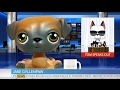 LITTLEST PET SHOP NEWS: TOM DAWSON'S KIDNAPPERS REVEALED - BREAKING NEWS UPDATE #6